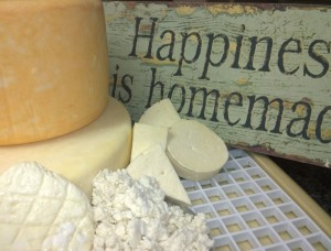 Aug 2015 Hartbeespoortdam cheese courses