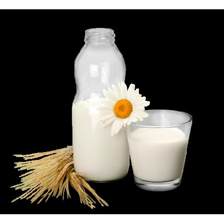 Amasi/buttermilk cultures