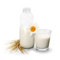 Amasi/buttermilk cultures (same as mesophilic on this site)