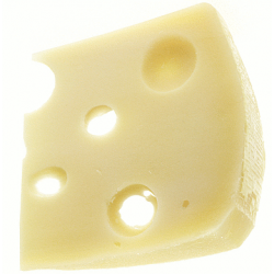 Propionibacterium for Swiss Cheese