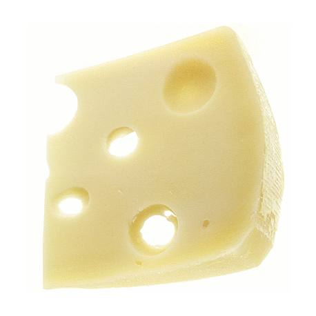Propionibacterium for Swiss Cheese